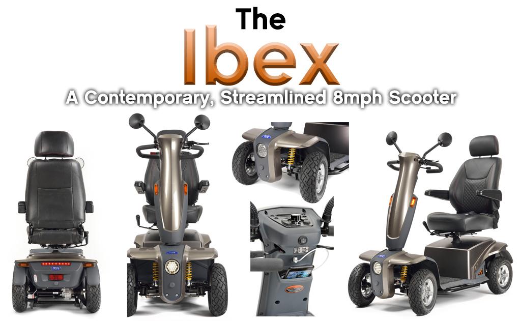 Ibex Banner
